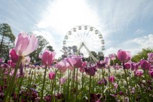 Floriade 2018 @ Commonwealth Park